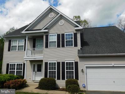 Fredericksburg Single Family Home For Sale: 10914 Jarvis Court