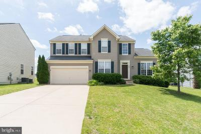 Fredericksburg Single Family Home For Sale: 9802 Autumn Path Court
