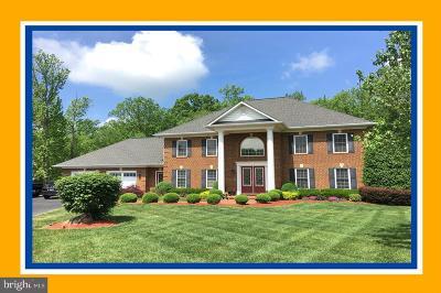 Spotsylvania Single Family Home For Sale: 8411 Broadmore Lane