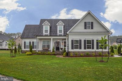 Spotsylvania County Single Family Home For Sale: 11431 Osprey Trail