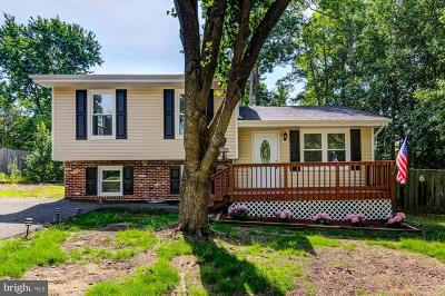 Fredericksburg Single Family Home For Sale: 604 Pleasants Drive