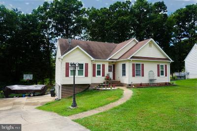 Fredericksburg VA Single Family Home For Sale: $290,999