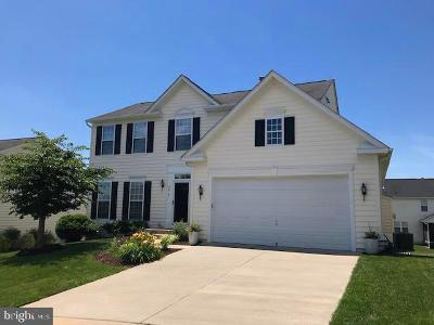 Fredericksburg Single Family Home For Sale: 5414 Silver Maple Lane