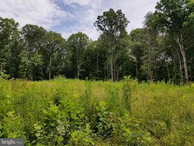 Spotsylvania County Residential Lots & Land For Sale: 10500 Fox Run Crossing Lane