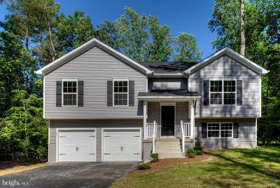 Spotsylvania County Single Family Home For Sale: Caden Lane