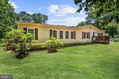 Spotsylvania Single Family Home For Sale: 9030 Granite Springs Road