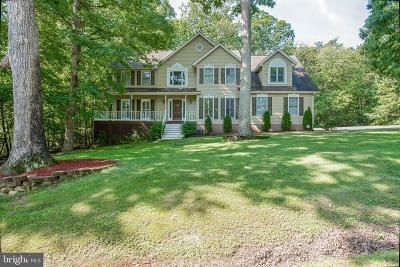 Fredericksburg Single Family Home For Sale: 8110 Davmar Lane
