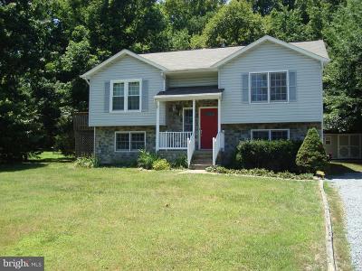 Fredericksburg Single Family Home For Sale: 7403 N Katie Drive