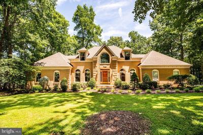 Fredericksburg Single Family Home For Sale: 8303 Canteen Circle