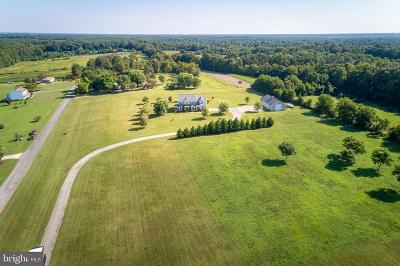 Spotsylvania Single Family Home For Sale: 5927 Morris Road
