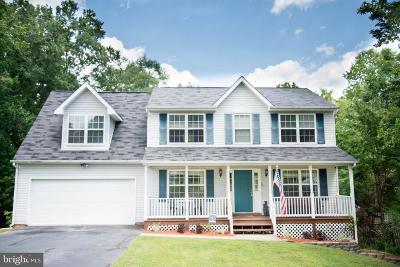 Fredericksburg Single Family Home For Sale: 11903 Daisy Lane