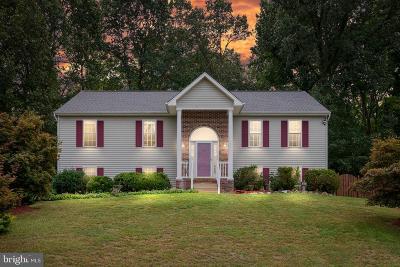 Fredericksburg Single Family Home For Sale: 3612 E Glen Dower Drive