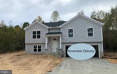 Spotsylvania County Single Family Home For Sale: 1700 Caden Lane