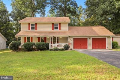 Fredericksburg Single Family Home For Sale: 502 Butternut Drive