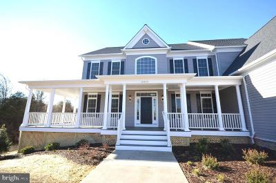 Spotsylvania County Single Family Home For Sale: 5907 Copper Mill Drive