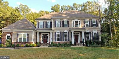 Spotsylvania Single Family Home For Sale: 11425 Brandy Lane