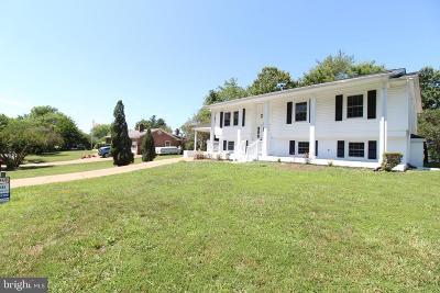 Fredericksburg Single Family Home For Sale: 12002 Branchwater Street