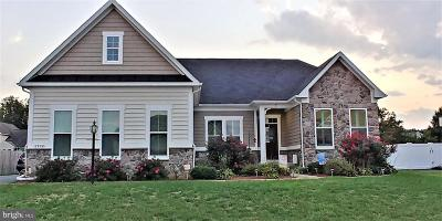 Fredericksburg Single Family Home For Sale: 2528 Cornell Drive