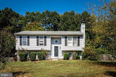 Fredericksburg Single Family Home For Sale: 7607 Regency Glen Drive