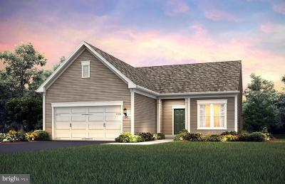 Celebrate Single Family Home For Sale: 11 McQuarie Drive #04