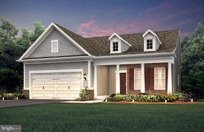 Celebrate Single Family Home For Sale: 11 McQuarie Drive #05