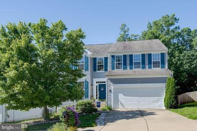 Stafford County Single Family Home For Sale: 49 Carriage Hill Drive