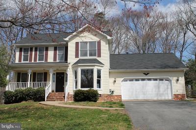 Fredericksburg Single Family Home For Sale: 113 Hamlin Drive