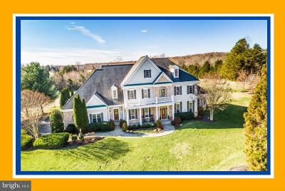 Stafford County Single Family Home For Sale: 10 Stefaniga Farms Drive