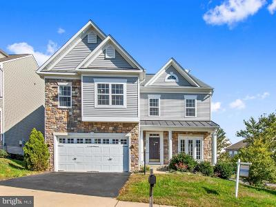 Single Family Home For Sale: 66 Carriage Hill Drive
