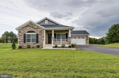 Stafford County Single Family Home For Sale: 124 Hickory Hill Overlook Court