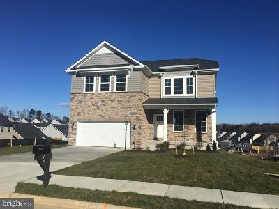 Stafford County Single Family Home For Sale: 7 Port View Drive