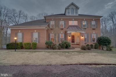 Fredericksburg Single Family Home For Sale: 140 Sanford Ferry Court