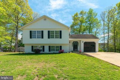 Fredericksburg Single Family Home For Sale: 10 Redskin Drive