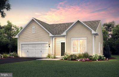 Celebrate Single Family Home For Sale: 11 McQuarie Drive #6