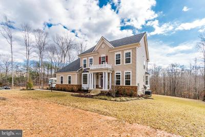 Stafford County Single Family Home For Sale: 20 Glenbogle Lane