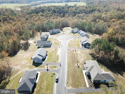 Fredericksburg Single Family Home For Sale: 104 Hickory Hill Overlook Court