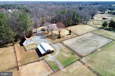 Fredericksburg City, Stafford County Farm For Sale: 452 Mount Olive Road