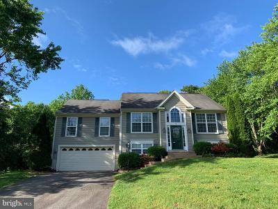 Fredericksburg Single Family Home For Sale: 12 Falling Water Court