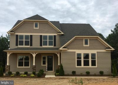 Fredericksburg City, Stafford County Single Family Home For Sale: 208 Liberty Hall Drive