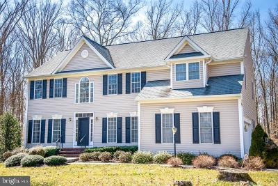 Fredericksburg Single Family Home For Sale: 76 Town And Country Drive