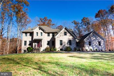 Stafford Single Family Home For Sale: 16 Winning Colors Road