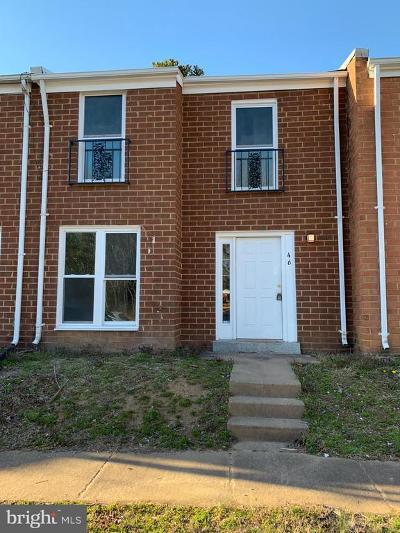 Rental For Rent: 46 Chestnut Drive