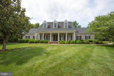Fredericksburg Single Family Home For Sale: 110 Carroll Circle