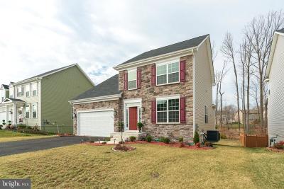 Fredericksburg City, Stafford County Single Family Home For Sale: 15 Doria Hill Drive