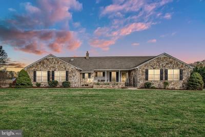 Fredericksburg Single Family Home For Sale: 118 Ringgold Road