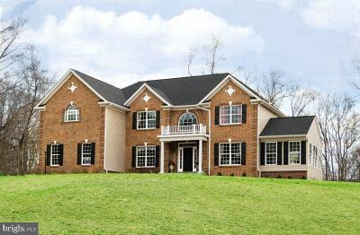 Stafford County Single Family Home For Sale: 143 Running Brook Court