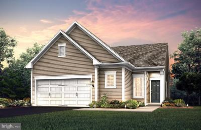 Celebrate Single Family Home For Sale: 11 McQuarie Drive #02
