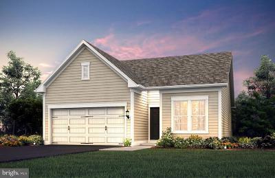 Celebrate Single Family Home For Sale: 11 McQuarie Drive #03