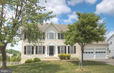 Fredericksburg Single Family Home For Sale: 84 Walnut Farms Parkway