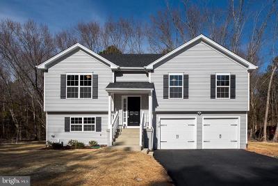 Fredericksburg Single Family Home For Sale: 10 Howard Circle